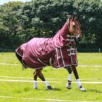 Guardian Equestrian Fence Buster